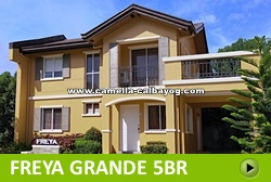 Freya House and Lot for Sale in Calbayog City Philippines